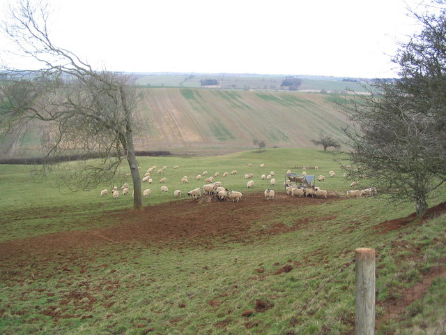 Fields west of Preston