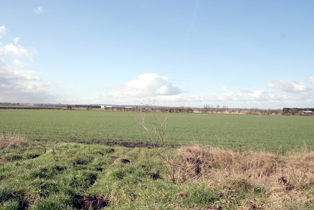 Fen fields near Bourne Rugby Club