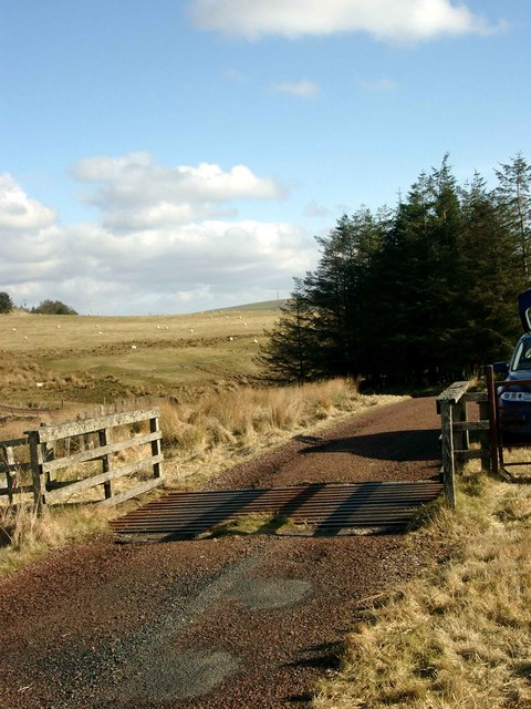 Cattle grid on the Auchrobert to Logan Reservoir road