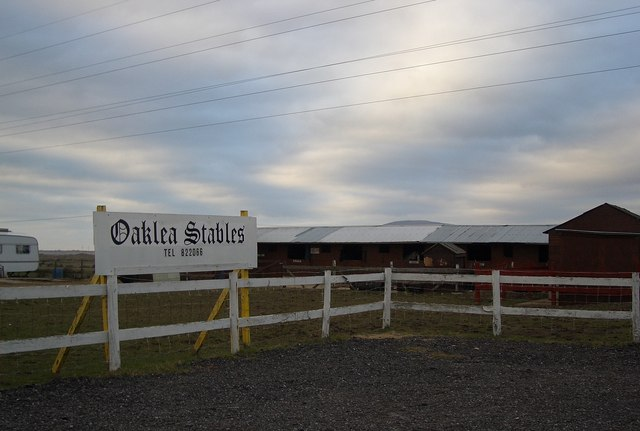 Oaklea Stables