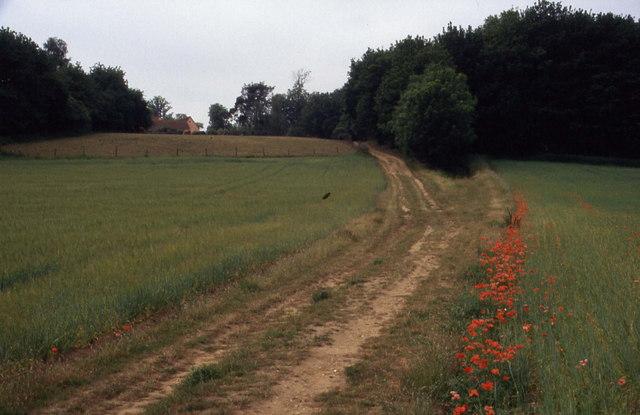 Track to Langham Hall