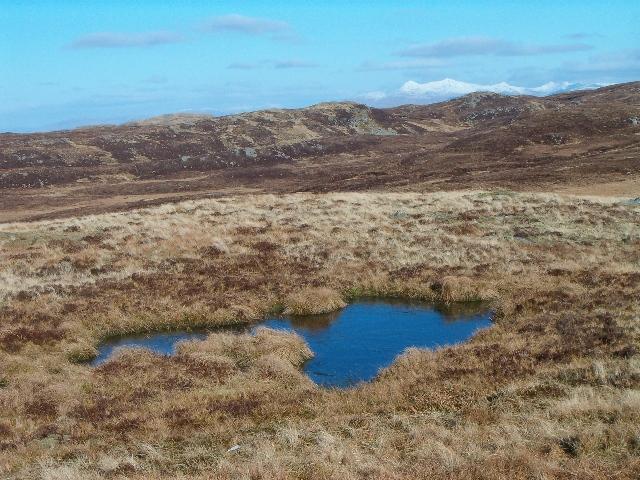 Moorland, looking north-east