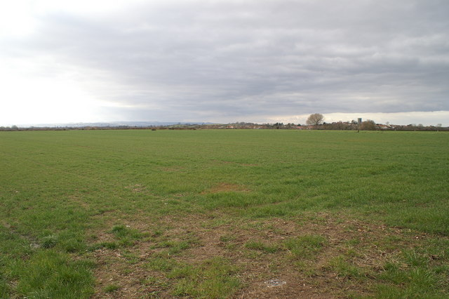 Field looking to Middlezoy