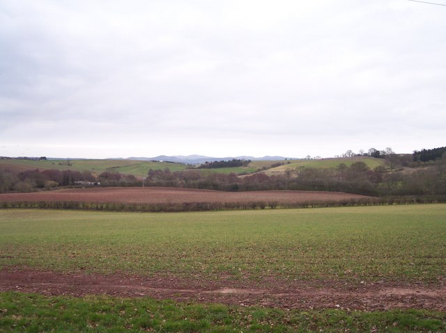 The Fields of Castle Farm