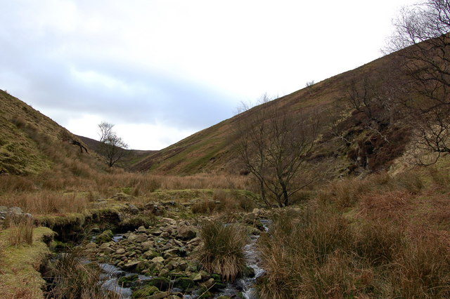 Looking up Bleadale towards Brown Berry Clough