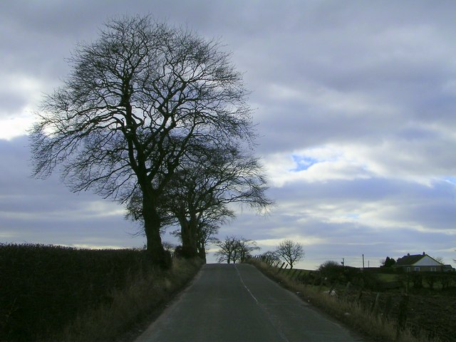 The Road to Blacklands