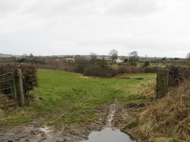 Looking East along the bottom edge of the square at Dodder Carr