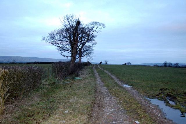 Farm track at Higher House Farm