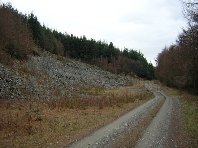 Quarry in Mabie Forest