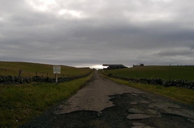 Road to Pitreuchie Farm.