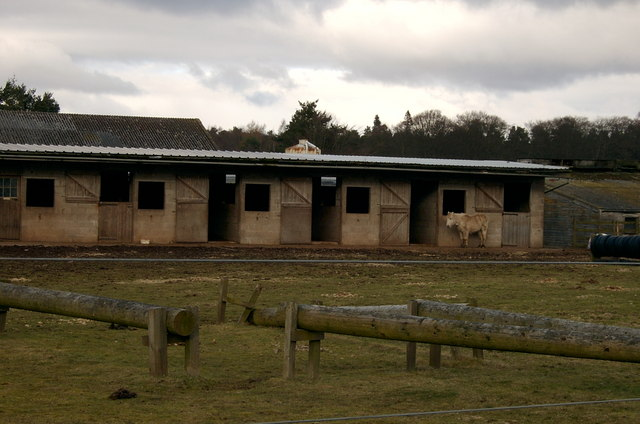 Stables in the Northmuir.