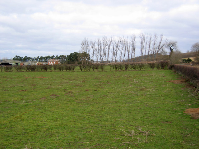 Warren Hill Farm