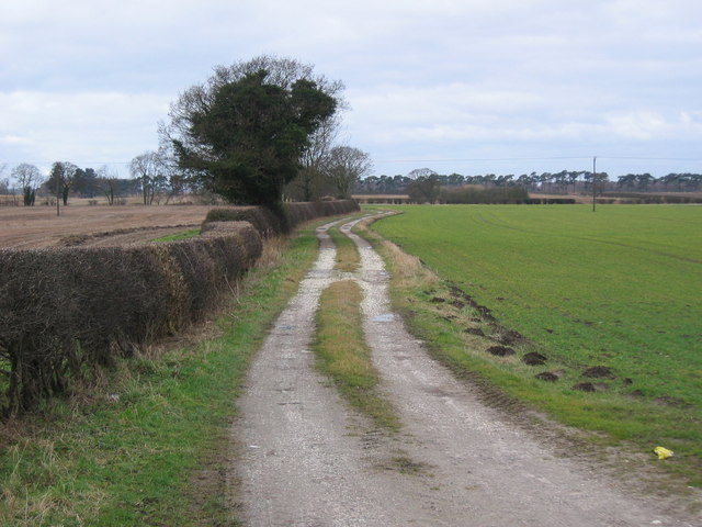 Track at South Cliffe