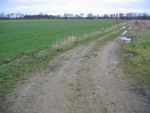 Track at SE839378
