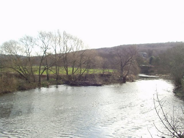 River Aire from Apperley Lane bridge.