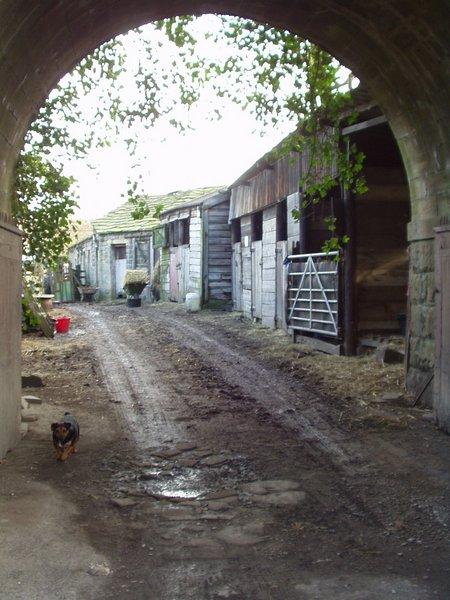 Farm entrance, Apperley Bridge