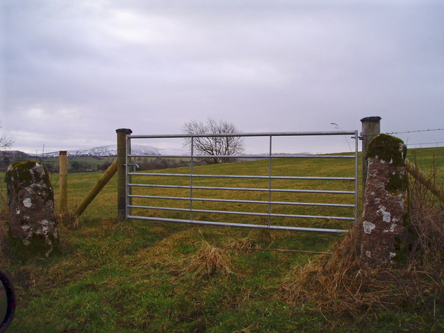 Old and new gateposts