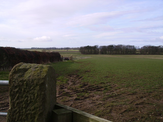 Farmland Cockerham