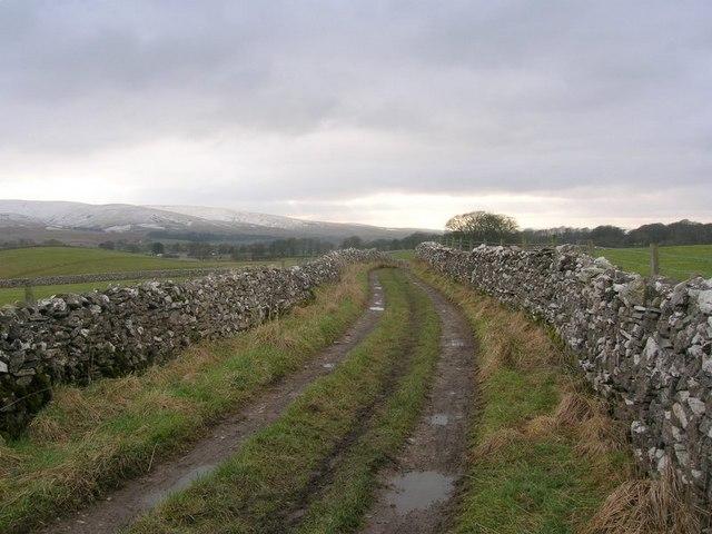 Lane between Friar's Bottom and Smardale Bridge