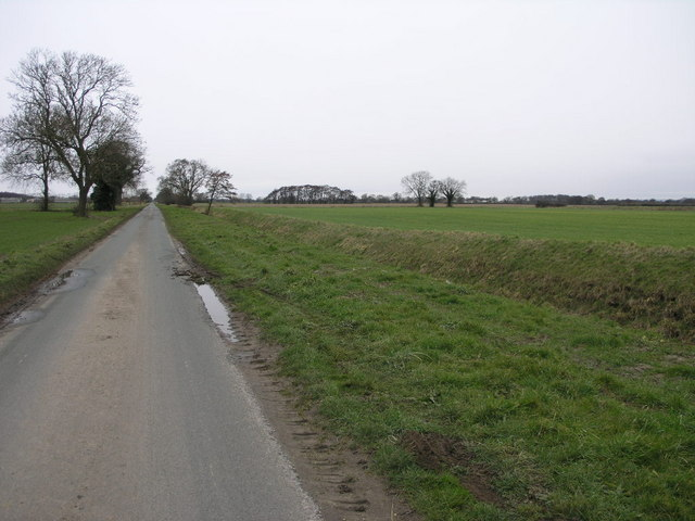 Fields and Road