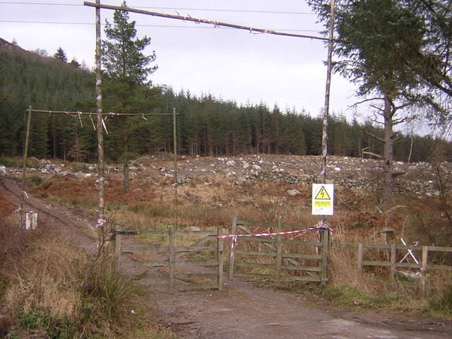 Forestry Works on Auchengray Hill
