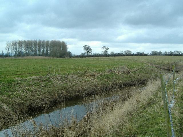 River Gowy near Cotton Edmunds Farm
