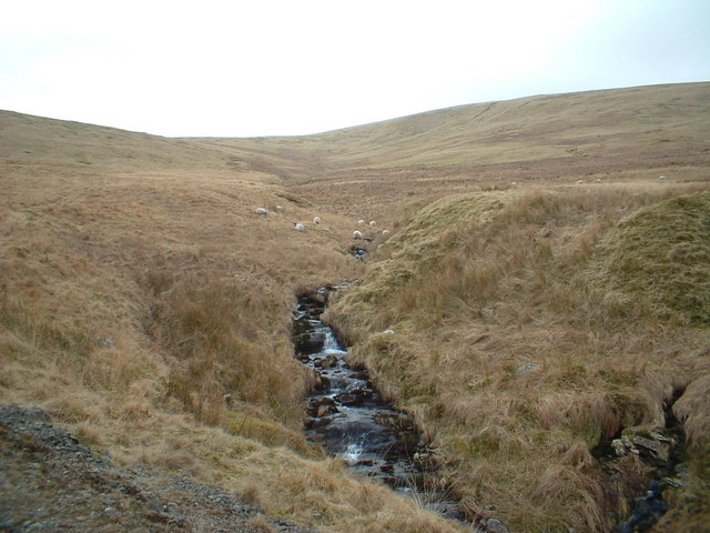 Coom Burn beside the Southern Upland Way