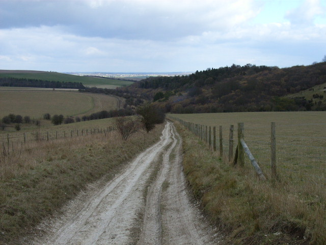 Byway descending, Langdon Hill