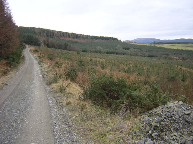 Replanted Forest, Locharthur Hill