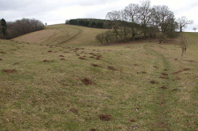 Valley between Monkham Wood and Boy's Grove