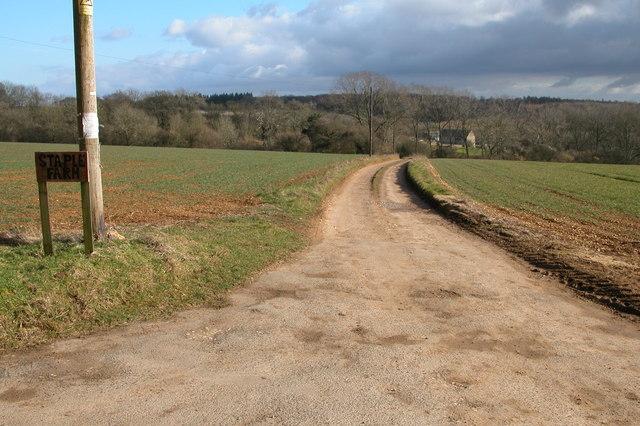 Driveway to Staple Farm, Colesbourne