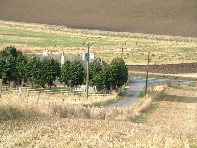 Farm road T-junction