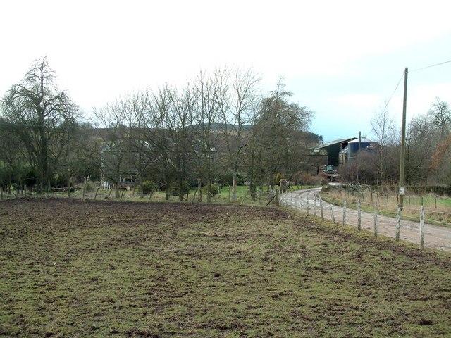 Pitbladdo Farm