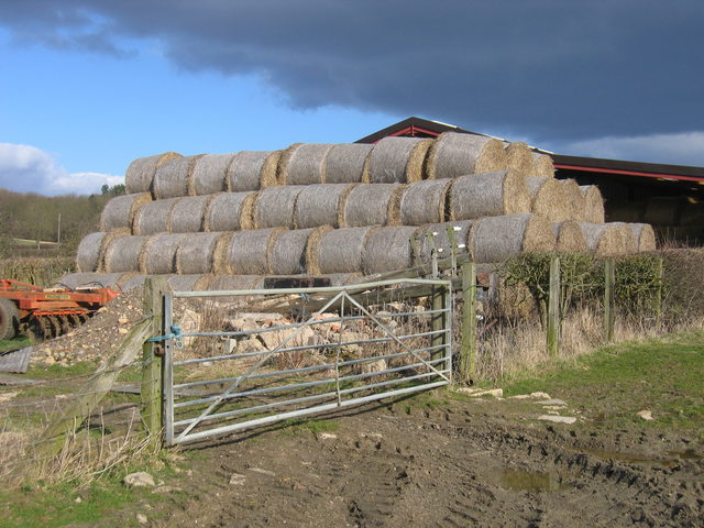 Straw bales and telegraph poles