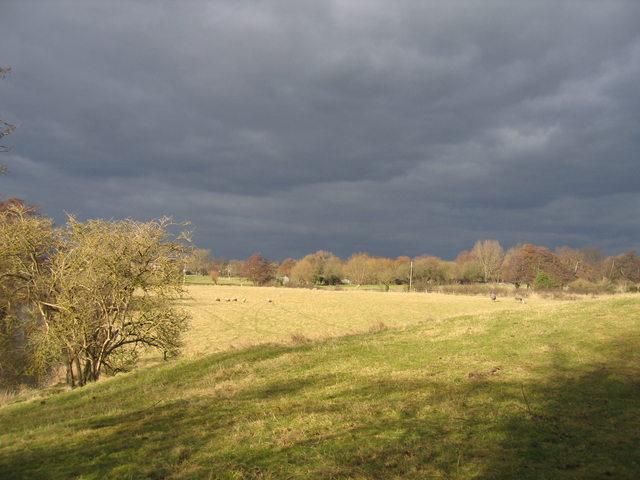 Fields by Mill Lane, Oversley Green