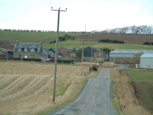 Wester Pitscottie Farm