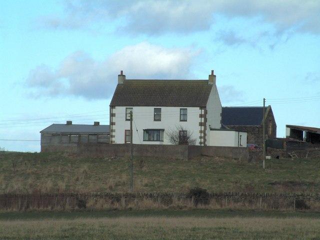 Percy Baldinnie Farm