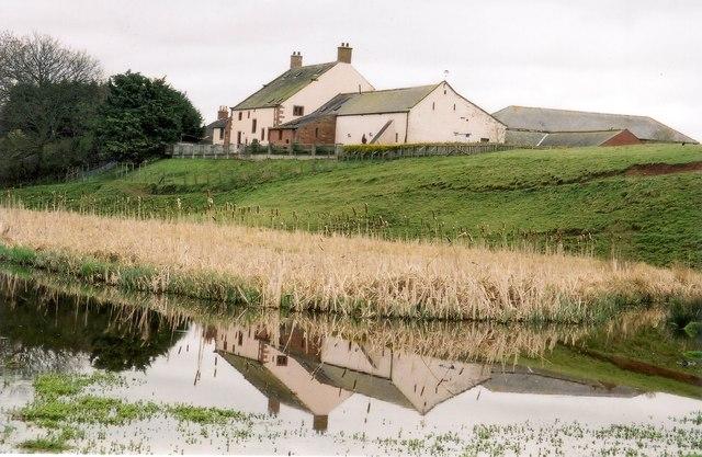Bleatarn, looking across to Bleatarn Farm