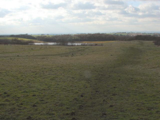 Pond near Halmer End