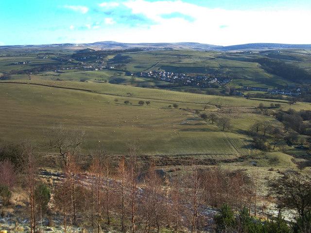 Pasture west of Holme Chapel