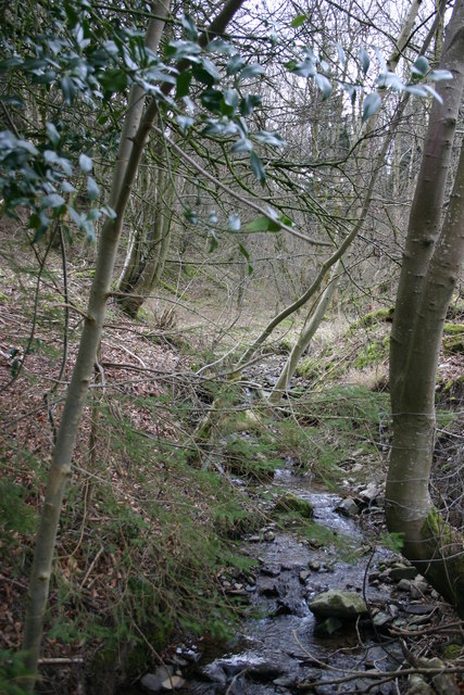 Small Stream on Soulby Fell