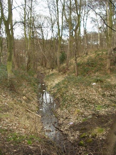 Abbey Mill Race, Hawksworth Wood