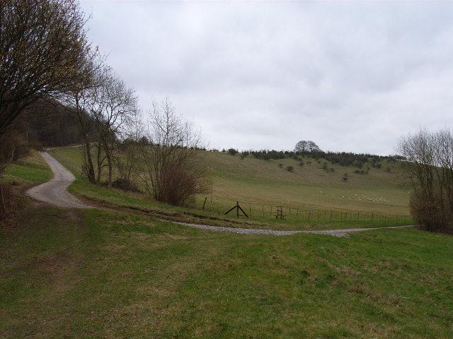 Hillside on the Well Barn Estate
