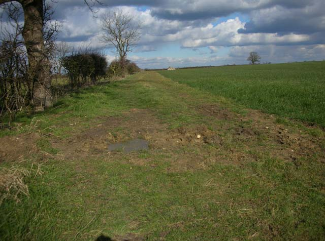 Field-edge Footpath