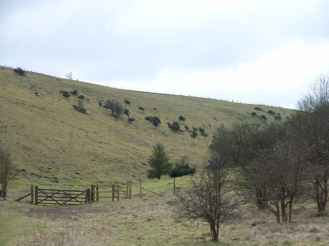Valley, Aston Upthorpe Downs