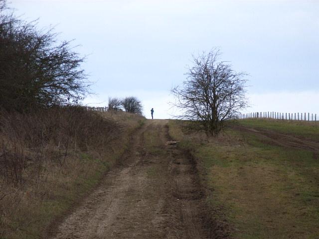 The Ridgeway, Several Down
