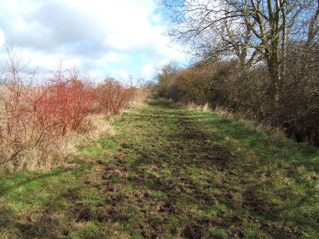 Path to Edwin's Hall