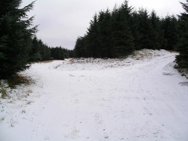 Junction, Forest Road, Glentress Forest