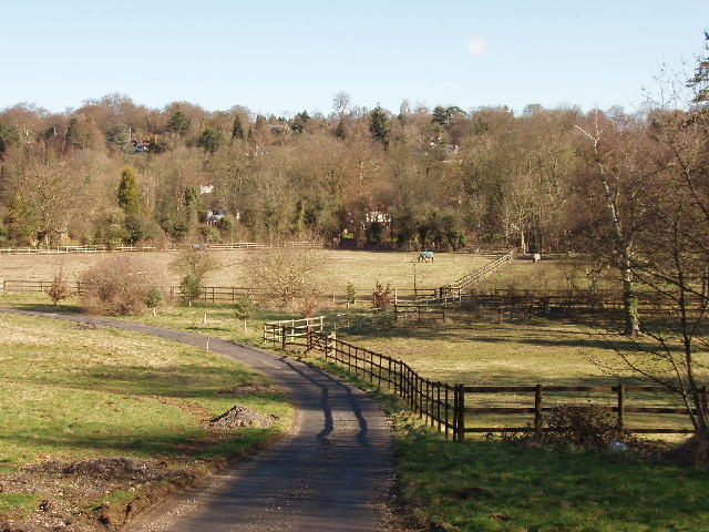 Paddocks by Little Lady's Wood, Rickmansworth