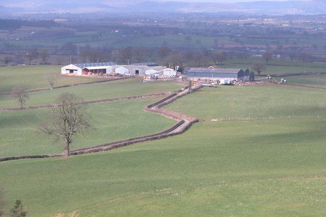 Country lane to Blackhouse Farm